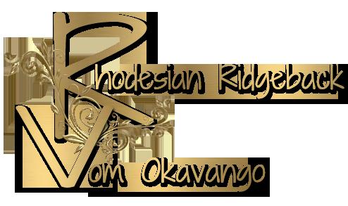 okavango-logo-starteseite